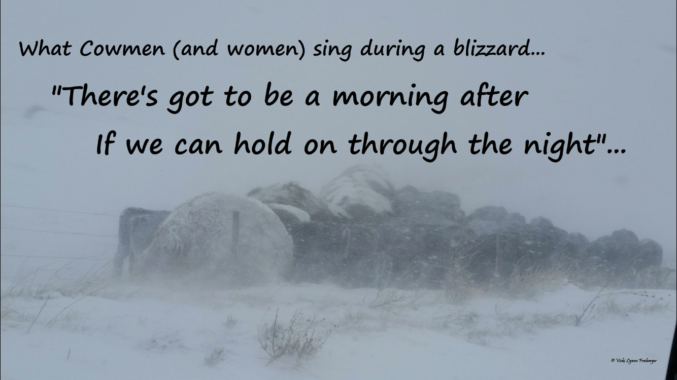 cowmen and cowwomen in a blizzard